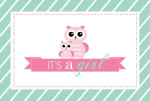 Mint Stripes And Pink Owls Girl Baby Shower Invitation New Baby Card Wording