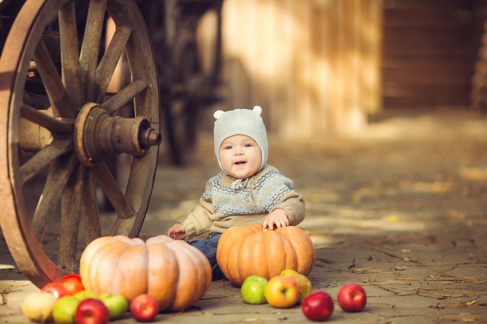6 Month Baby Photo Ideas With Dogs Summer Winter Fall Vintage – Fall Birth Announcements