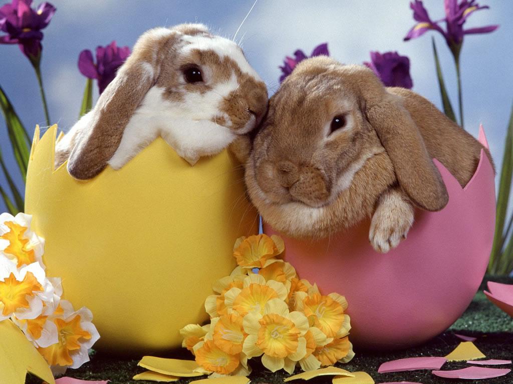 Elegant Easter Decor Ideas